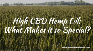 High-CBD-Hemp-Featured-Image-672x372
