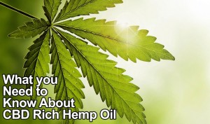 What-you-need-to-know-about-hemp-oil